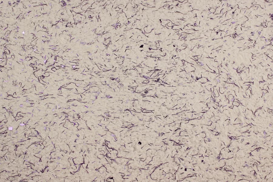 Рідкі шпалери Макс-Колор тип ЛК-13 колір фіолетовий, целюлоза. Ціна 201 грн - Купити в Києві і Україні