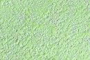 Рідкі шпалери Новий-Тон 32 салатовий колір Ціна 260 грн - Купити в інтернет магазині БудБум доставка по Україні